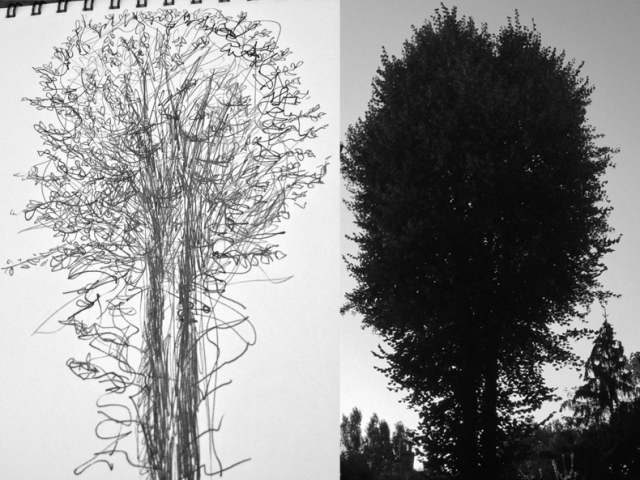 manifesto tree
